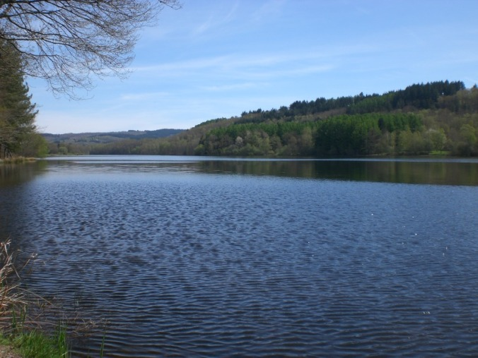 Source: https://upload.wikimedia.org/wikipedia/commons/e/e2/Lac_de_saint-pardoux_avril_2008.JPG