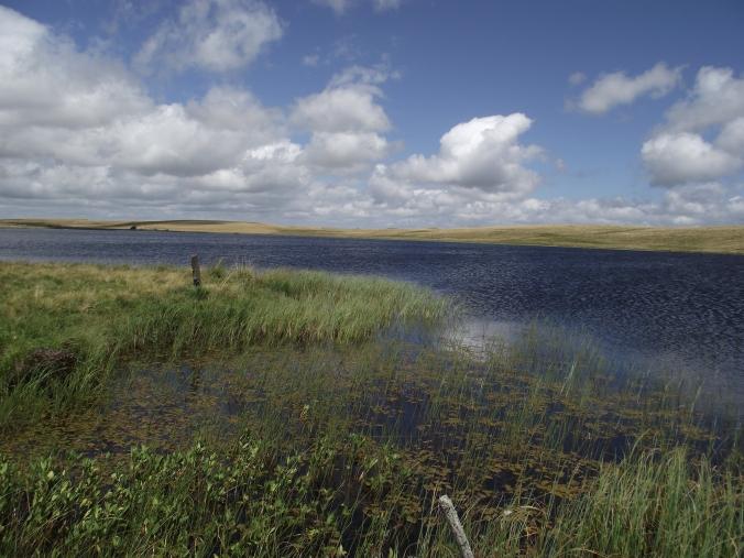 Lac_de_Saint_Andéol_en_juillet.jpeg